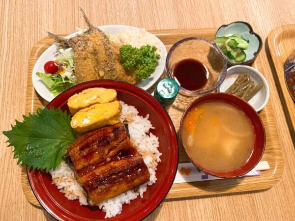 食彩 源ちゃん、うな丼イワシフライ定食