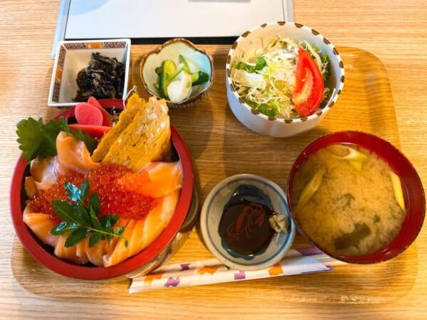 食源ちゃん、生サーモンとイクラ丼