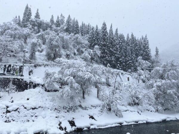 せせらぎ荘からの雪景色